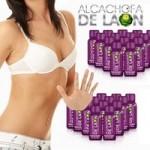 alcachofa-thumb